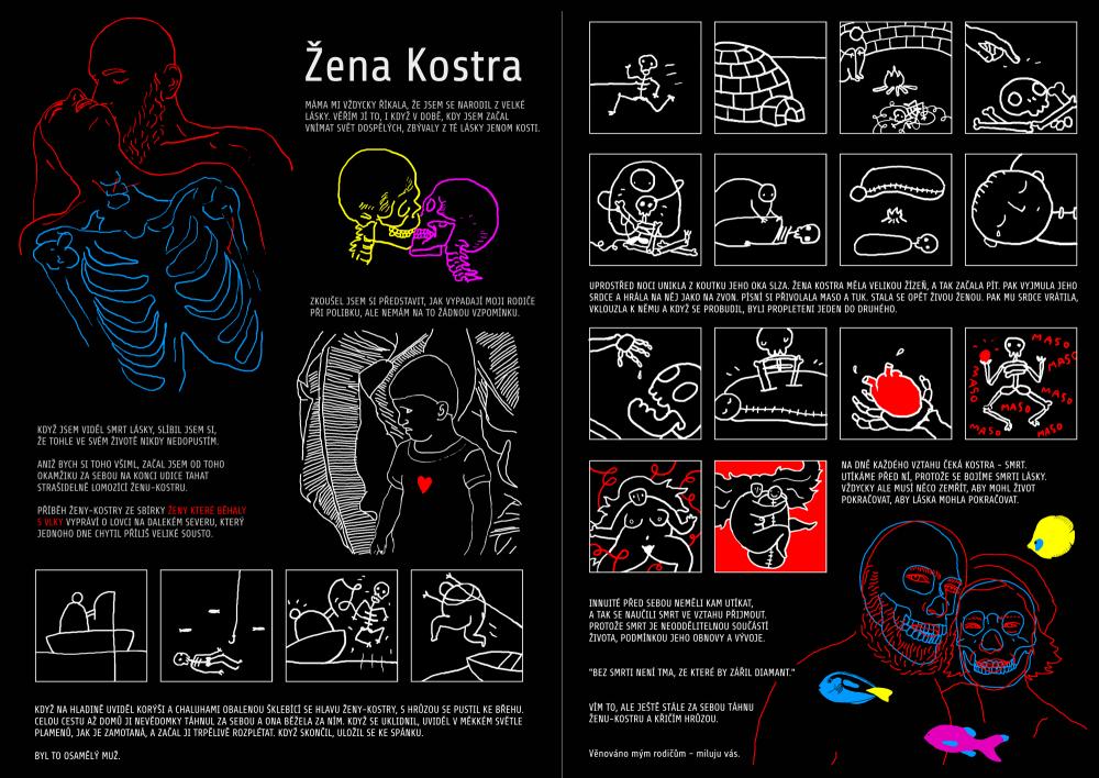NPkomiks_zenakostra